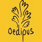 Oedipus Kinderyoga doos 24x0,33L