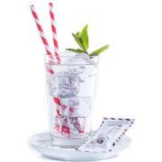 Agroposta Siroop Munt Single-Serve Sachets  doos 50x0,032L