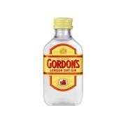 Gordon's Dry Gin           doos 12x0,05L