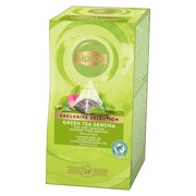 Lipton Exclusive Selection Green Sencha doos 30st