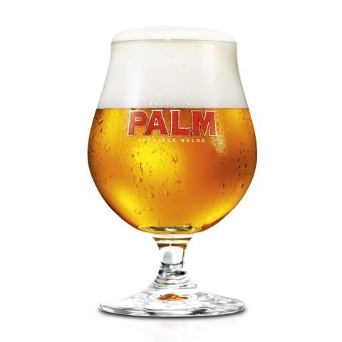 Palm Bolglas 25cl               doos 6st
