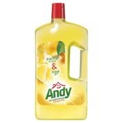 Andy Allesreiniger Citroen Fris fles 1,00L